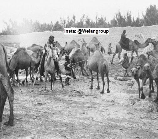 صور نادرة لرجال من قبيلة الحسنة من عنزة التقطت عام1900 في بادية الحماد