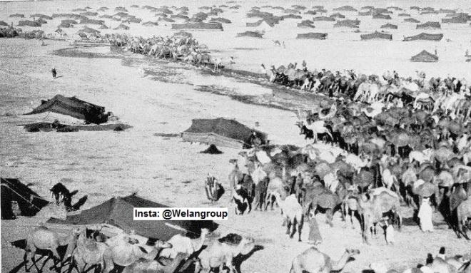 مضارب قبيلة الروله عام 1917م